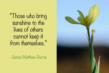 Inspirational Quote & Image